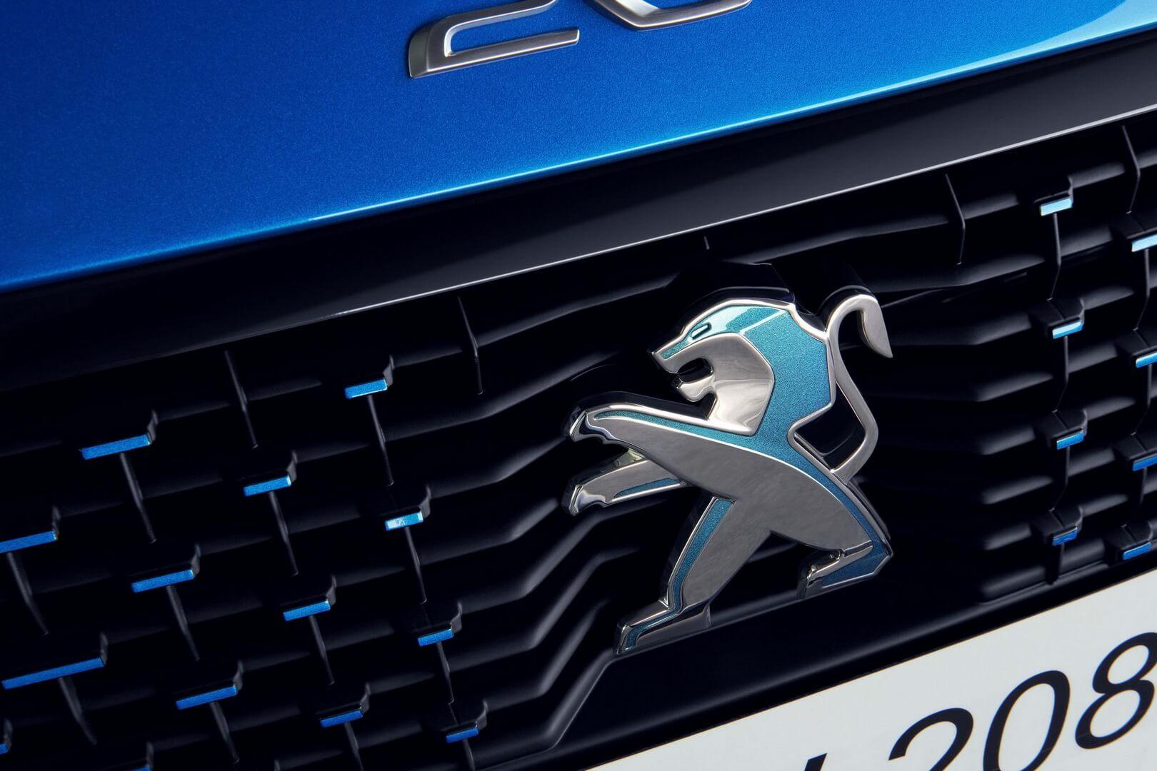 Фотография экоавто Peugeot e-208 - фото 18
