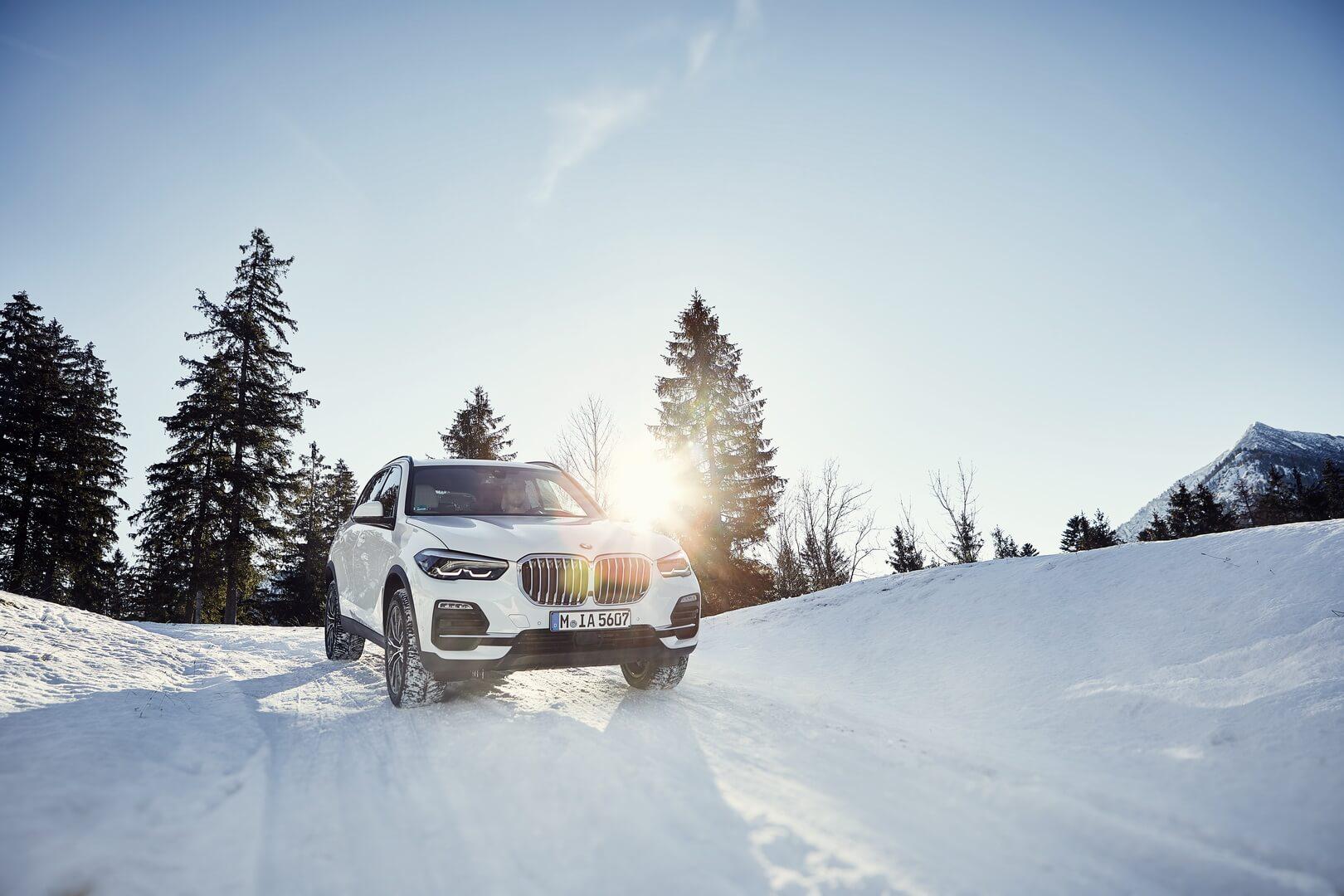 Фотография экоавто BMW X5 xDrive45e - фото 9